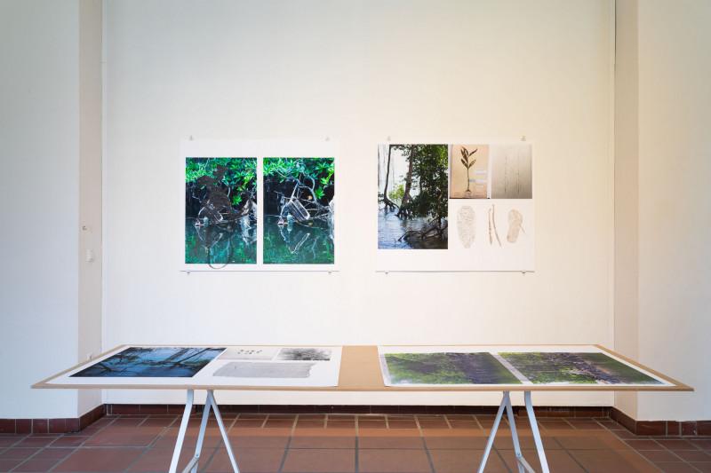 An der Wand und auf einer davorstehenden Tischplate sind jeweils mehrere farbige Fotodrucke mit Naturaufnahmen ausgestellt. Darauf sind Abdrücke, die mit schwarzem Öl Abdrücke gepresst wurden.