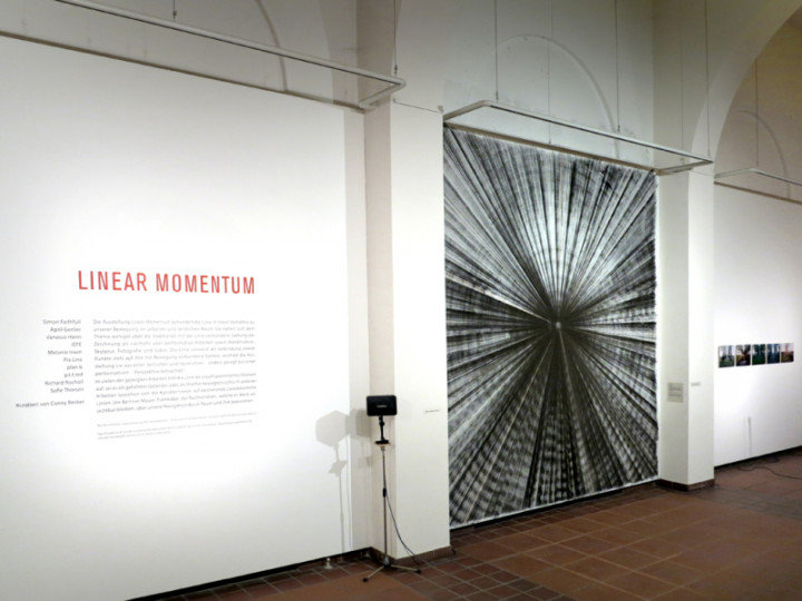 Galerie im Koernerpark; Vernissage; Linear Momentum; 2016